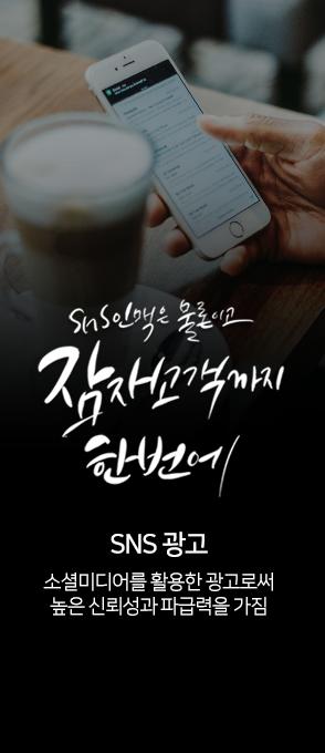 SNS 광고